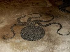 Mosaico di Bevagna, polipo