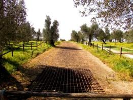 La grande cisterna