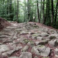 Flaminia Militare, una strada romana sulle vette dell'Appennino!